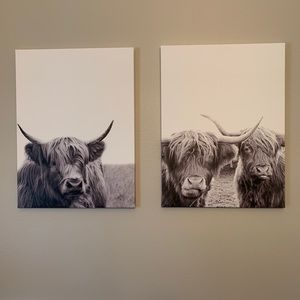"24"" x 18"" cattle canvas prints"